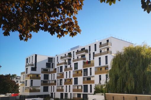 Sceaux – Mésanges – Avenue Jules Guesde